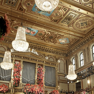 The VIenna Philharmonic Orchestra